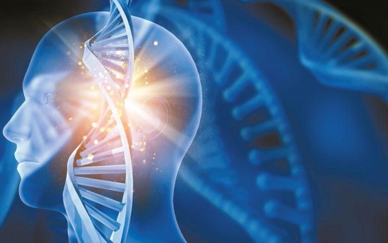 Съществува ли наистина генетичната памет?