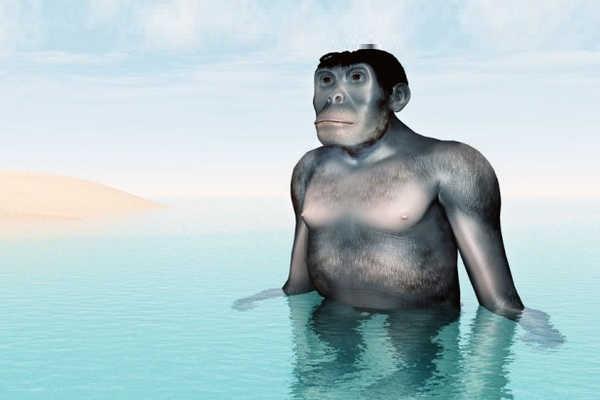 Теорията за водния произход на човека